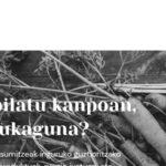 IKO Igeldoko Kooperatiba web